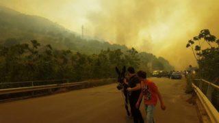 Incendio Cefalù 16.06.2016